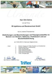 TRIFLEX Urkunde 2012 D. Dehne