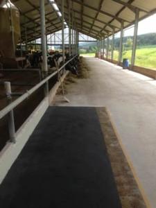 Triflex Agrarwirtschaft03